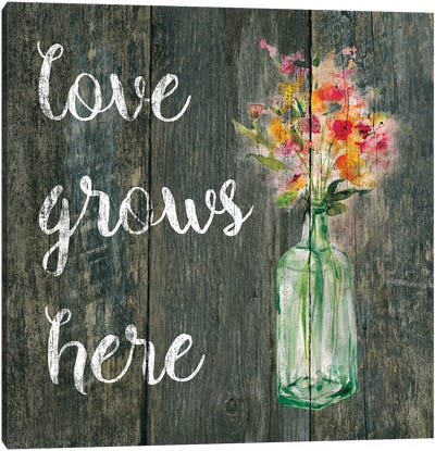 Love Grows Here II Canvas Art Print