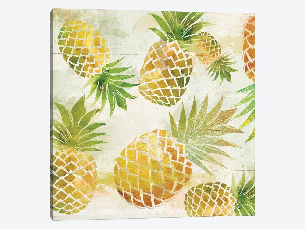 Pineapple Dance I by Carol Robinson 1-piece Canvas Print