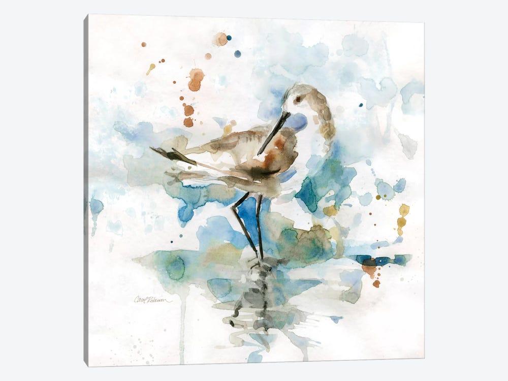 Palm Beach Piper by Carol Robinson 1-piece Canvas Wall Art