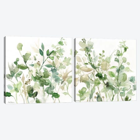 Sage Garden Diptych Canvas Print Set #CRO2HSET008} by Carol Robinson Canvas Artwork