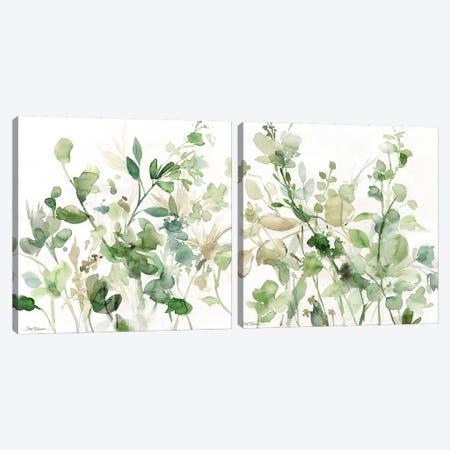 Sage Garden Diptych Canvas Print Set #CRO2HSET008} by Carol Robinson Canvas Artwork