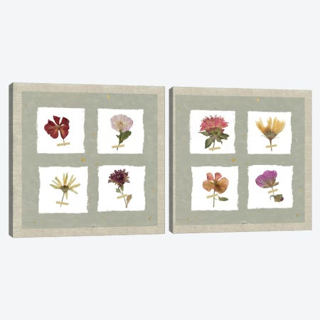 Pressed Blooms Diptych Canvas Print Set #CRO2HSET012} by Carol Robinson Canvas Print