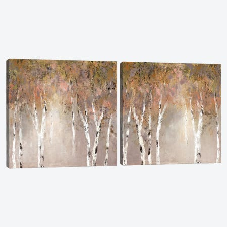Sunlit Birch Diptych Canvas Print Set #CRO2HSET018} by Carol Robinson Art Print