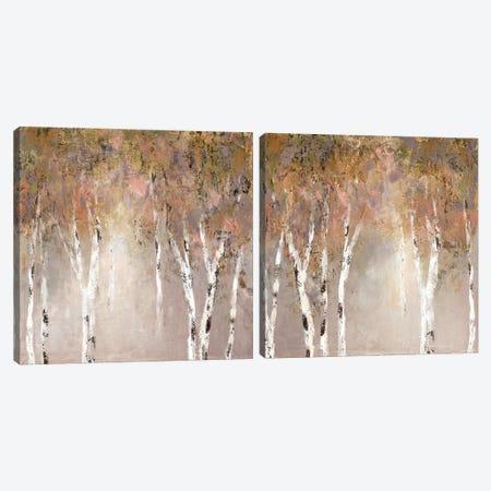 Sunlit Birch Diptych Canvas Print Set #CRO2HSET018} by Carol Robinson Art Print