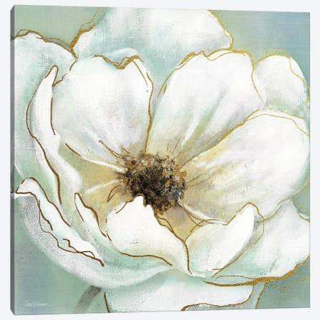 Soft Teal Splendor Canvas Print #CRO306} by Carol Robinson Canvas Print