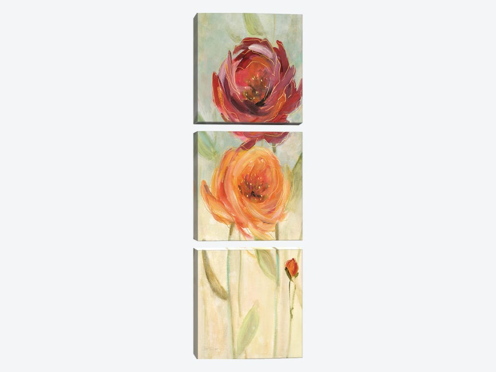 Sweet Poppies I by Carol Robinson 3-piece Canvas Art Print