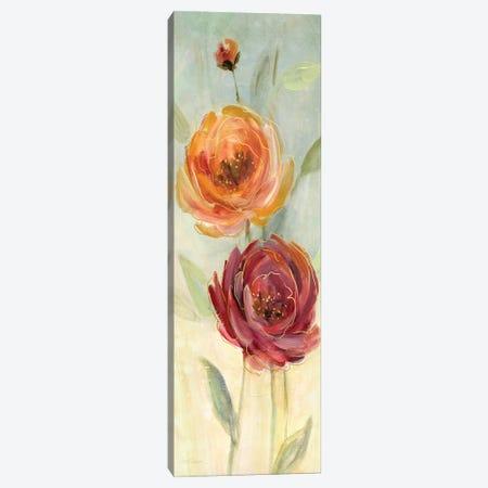 Sweet Poppies II Canvas Print #CRO312} by Carol Robinson Canvas Art Print
