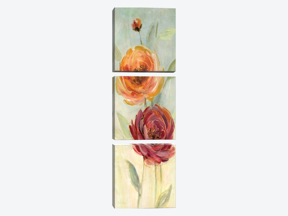 Sweet Poppies II by Carol Robinson 3-piece Canvas Artwork