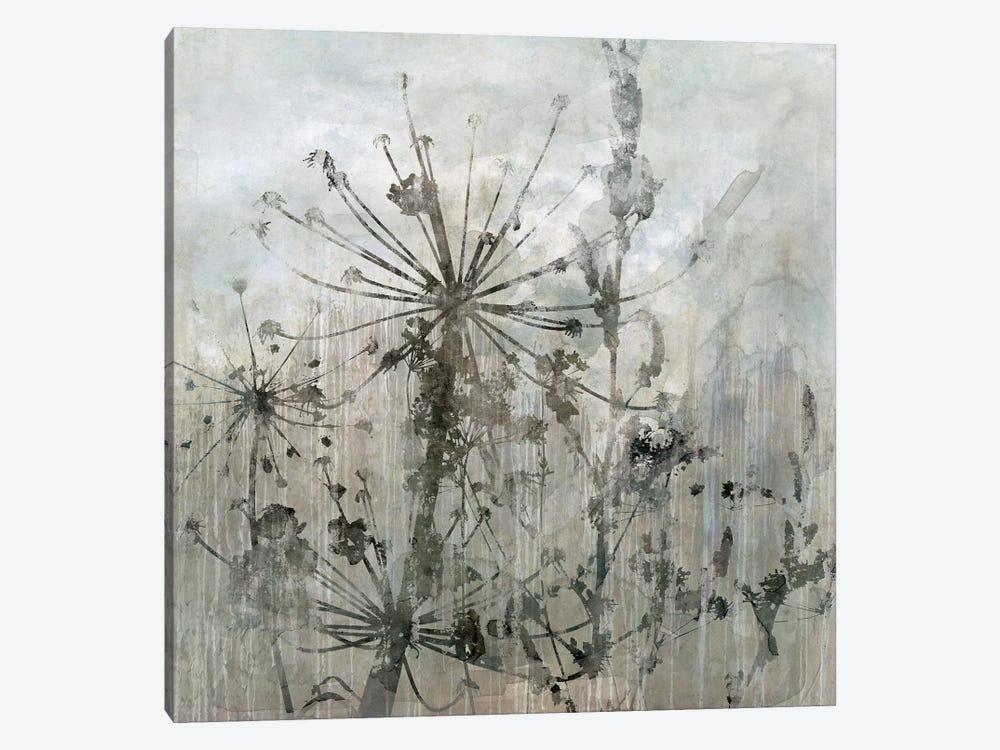 Winter's Lace I by Carol Robinson 1-piece Canvas Artwork