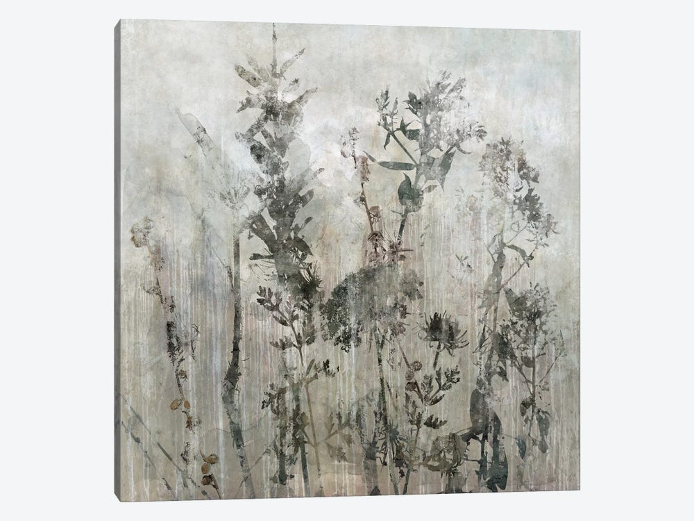 Winter's Lace II by Carol Robinson 1-piece Canvas Print