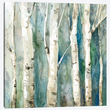 River Birch II Canvas Print #CRO32} by Carol Robinson Art Print
