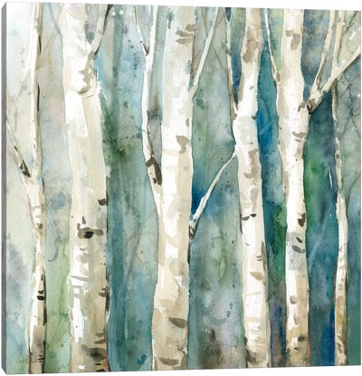 River Birch II Canvas Art Print