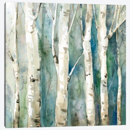 River Birch II Canvas Print #CRO32} by Carol Robinson Art Print