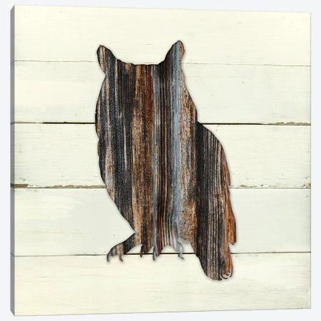 Woodland Owl 3-Piece Canvas #CRO330} by Carol Robinson Canvas Art Print