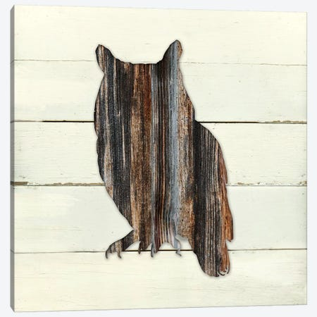 Woodland Owl Canvas Print #CRO330} by Carol Robinson Canvas Art Print