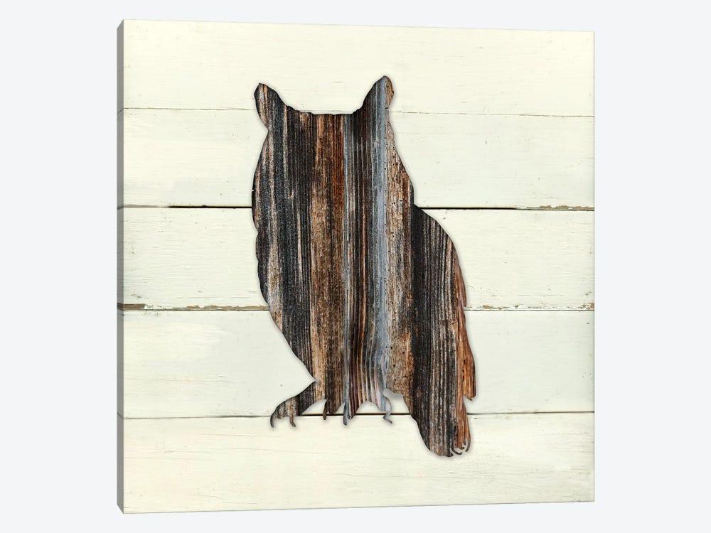 Woodland Owl by Carol Robinson 1-piece Canvas Artwork