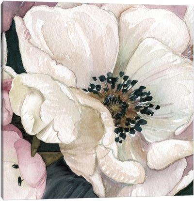 Anemone Study III Canvas Art Print
