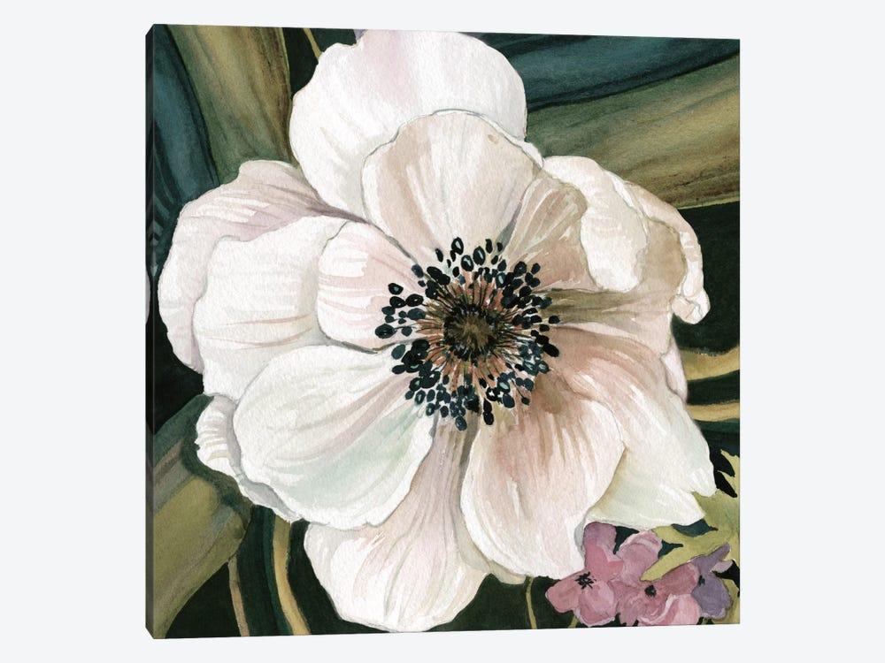 Anemone Study IV by Carol Robinson 1-piece Canvas Art Print