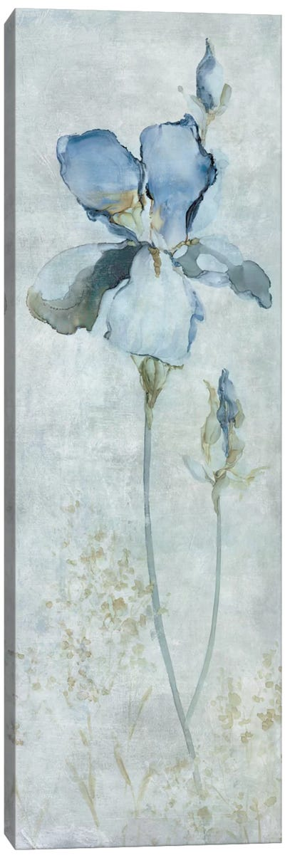 Blue Iris Canvas Art Print