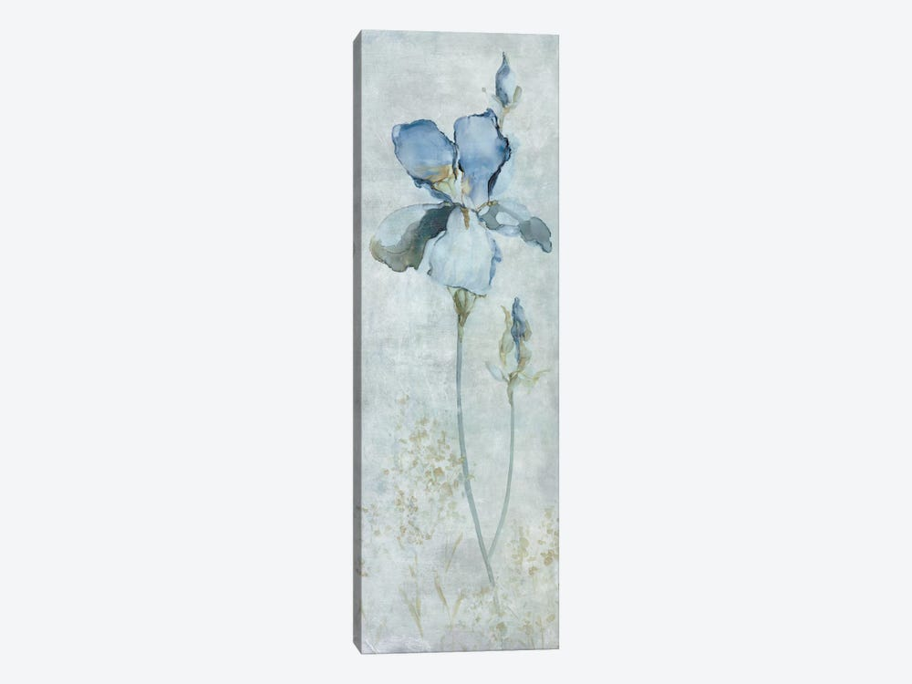 Blue Iris by Carol Robinson 1-piece Canvas Wall Art