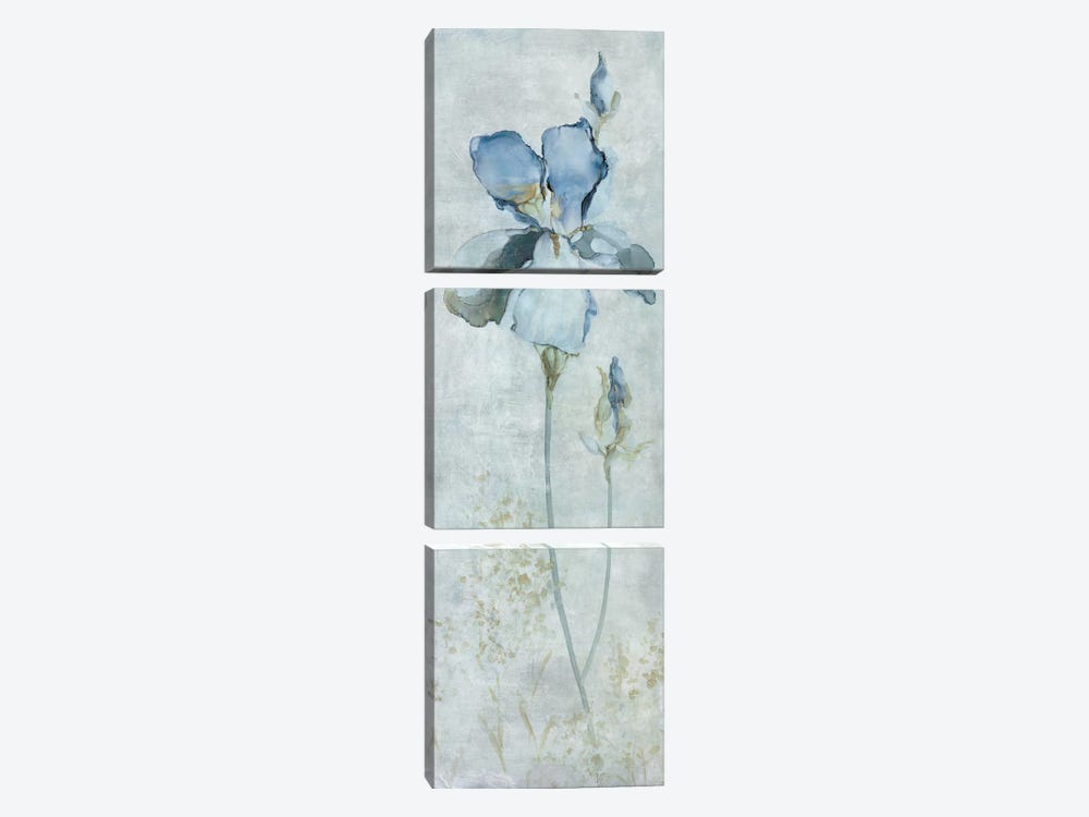 Blue Iris by Carol Robinson 3-piece Canvas Artwork