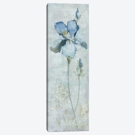Blue Iris Canvas Print #CRO334} by Carol Robinson Canvas Artwork