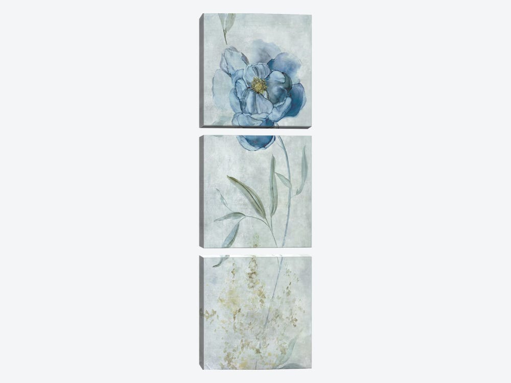 Blue Peony by Carol Robinson 3-piece Canvas Art Print