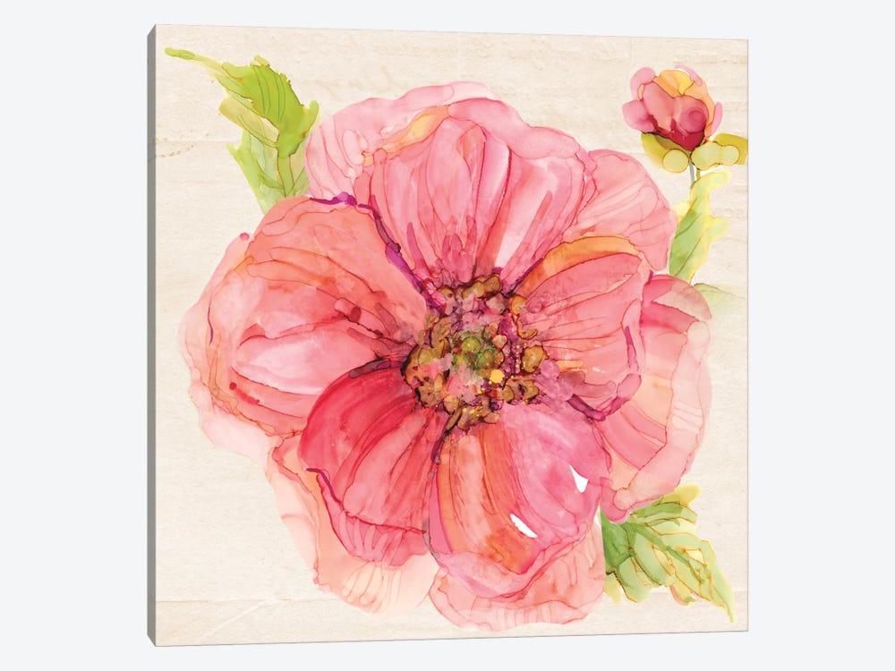 Botanical Peony In Zoom by Carol Robinson 1-piece Canvas Art