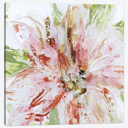 Floral Strokes II Canvas Print #CRO345} by Carol Robinson Canvas Print