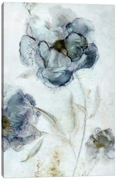 Morning Peony Canvas Art Print
