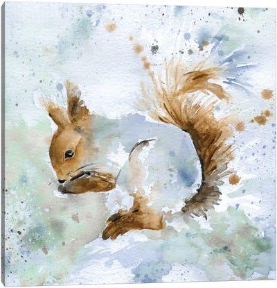 Squirrel Canvas Print #CRO37