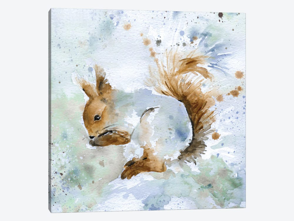 Squirrel by Carol Robinson 1-piece Canvas Art Print