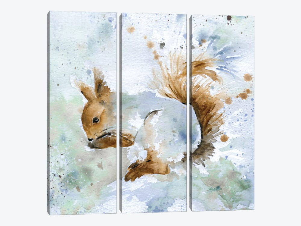 Squirrel by Carol Robinson 3-piece Art Print