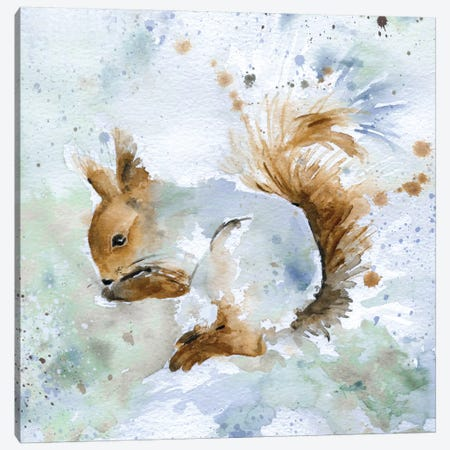 Squirrel Canvas Print #CRO37} by Carol Robinson Canvas Artwork