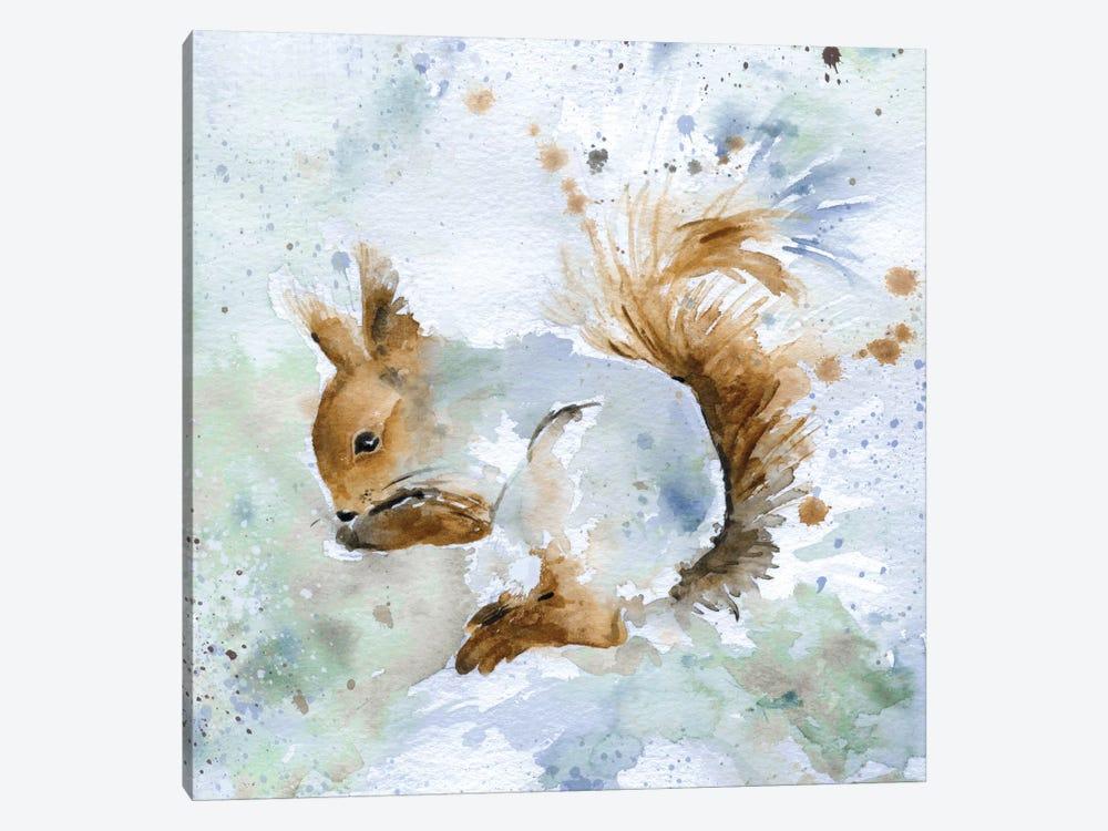 Squirrel by Carol Robinson 1-piece Canvas Art Print