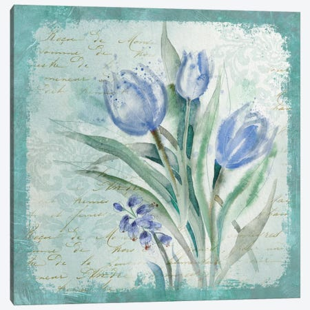 Tulip Medley Canvas Print #CRO382} by Carol Robinson Canvas Wall Art