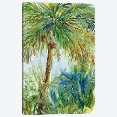 Vintage Palm Canvas Print #CRO383} by Carol Robinson Canvas Art