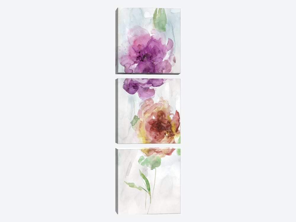 Watercolor Stems I by Carol Robinson 3-piece Canvas Art