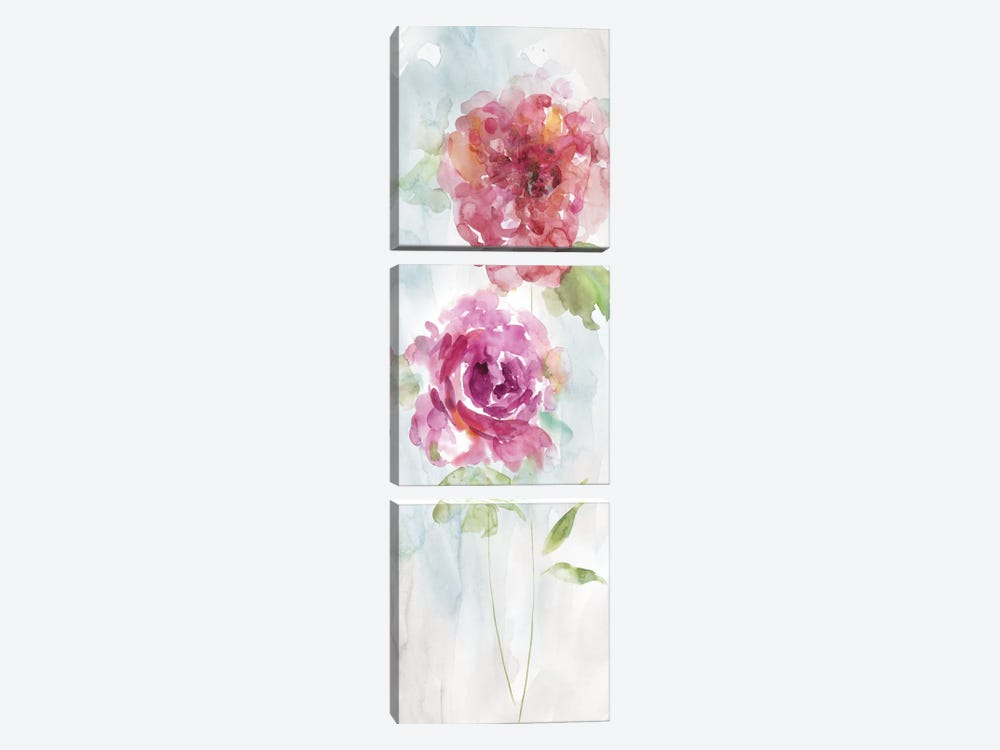 Watercolor Stems II by Carol Robinson 3-piece Art Print