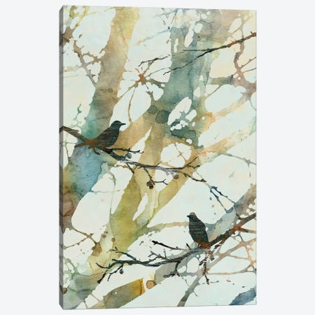 Botanical Birds II Canvas Print #CRO396} by Carol Robinson Canvas Wall Art