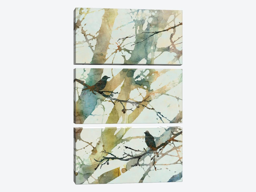 Botanical Birds II by Carol Robinson 3-piece Canvas Art