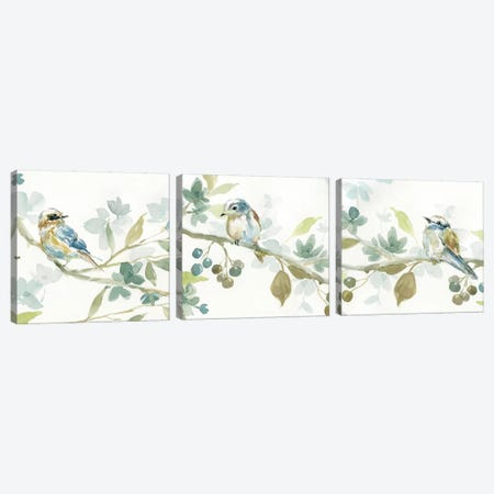 Spring Melody Triptych Canvas Print Set #CRO3HSET001} by Carol Robinson Canvas Art