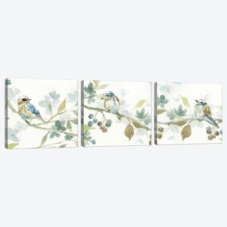Spring Melody Triptych Canvas Print Set #CRO3HSET001} by Carol Robinson Canvas Art