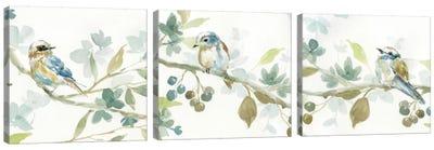Spring Melody Triptych Canvas Art Print