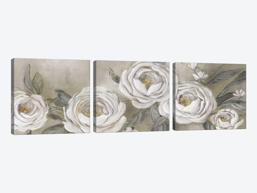Cottage Roses by Carol Robinson 3-piece Canvas Artwork