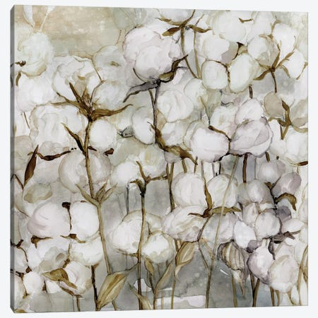 Cotton Field Canvas Print #CRO401} by Carol Robinson Canvas Art Print