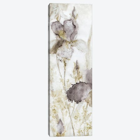 Dawn Iris Canvas Print #CRO402} by Carol Robinson Art Print