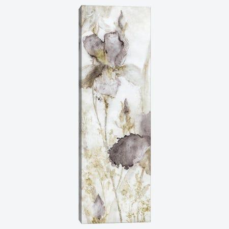 Dawn Iris Canvas Print #CRO402} by Carol Robinson Art Print