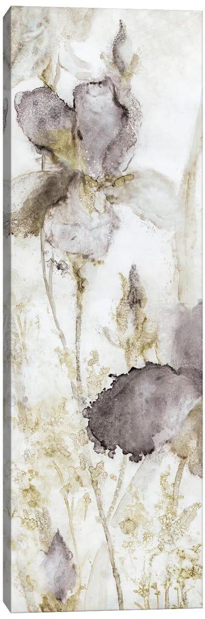 Dawn Iris Canvas Art Print