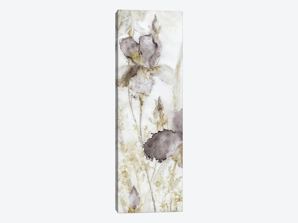 Dawn Iris by Carol Robinson 1-piece Canvas Wall Art